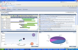 oracle-primavera-p6-enterprise-screenshot